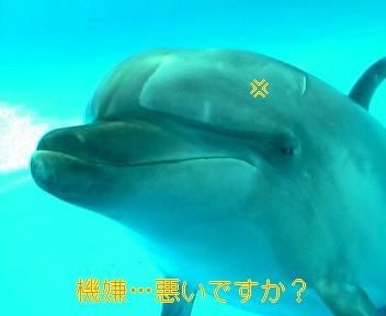 060219_092904_ed_ed_m.jpg