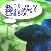 sakamaki_b
