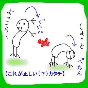 tatami_03