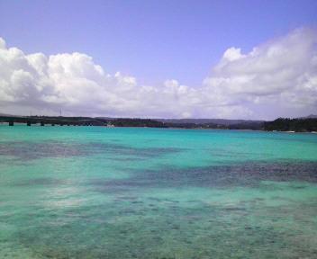 まさに美ら海