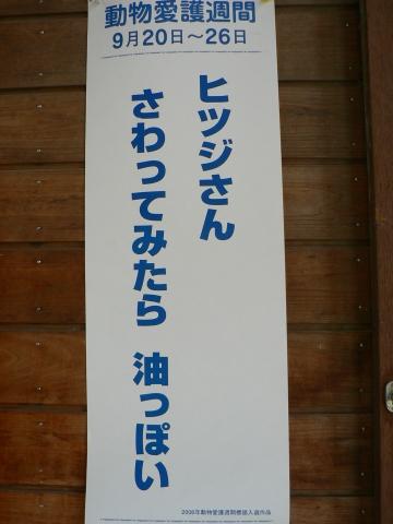 Hitsujisan_02