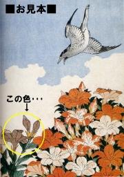 Hokusai_nurie03